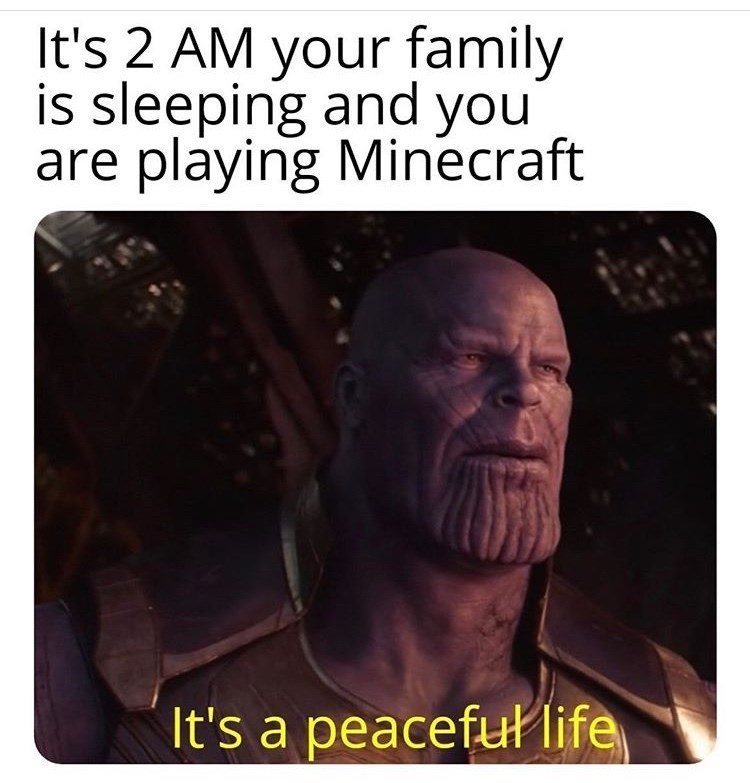 Text - It's 2 AM your family is sleeping and you are playing Minecraft It's a peaceful life