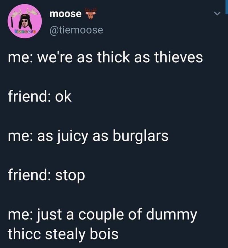 Text - moose @tiemoose iemooe me: we're as thick as thieves friend: ok me: as juicy as burglars friend: stop me: just a couple of dummy thicc stealy bois