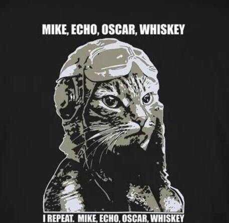 Felidae - MIKE, ECHO, OSCAR, WHISKEY I REPEAT. MIKE, ECHO, OSCAR, WHISKEY