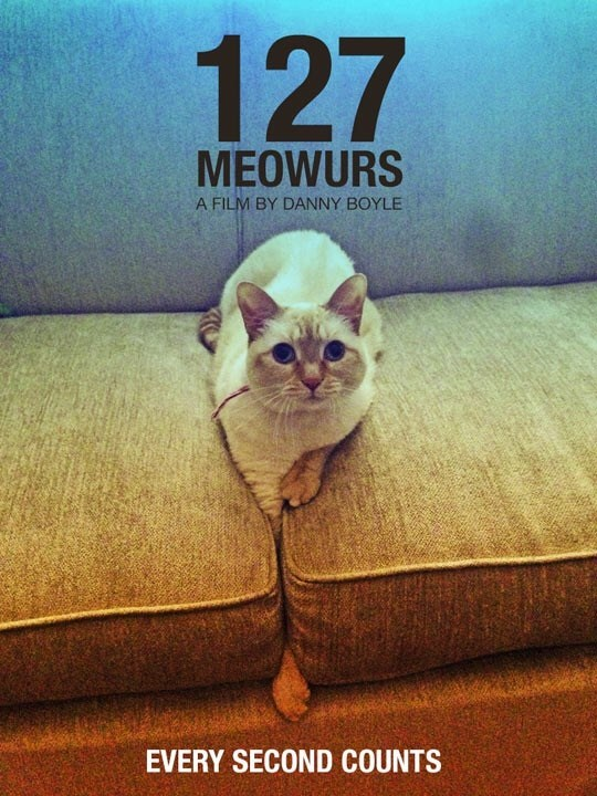 Cat - 127 MEOWURS A FILM BY DANNY BOYLE EVERY SECOND COUNTS