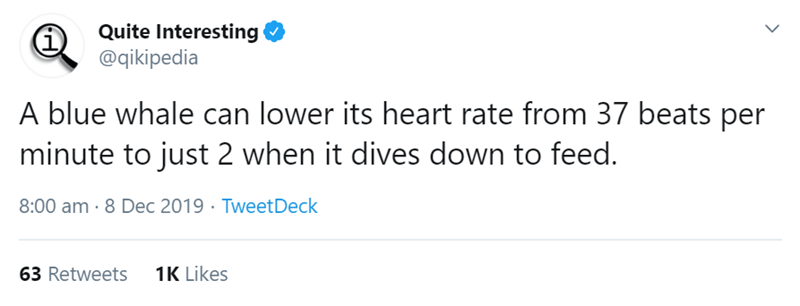 Text - Quite Interesting @qikipedia A blue whale can lower its heart rate from 37 beats per minute to just 2 when it dives down to feed. 8:00 am · 8 Dec 2019 · TweetDeck 1K Likes 63 Retweets