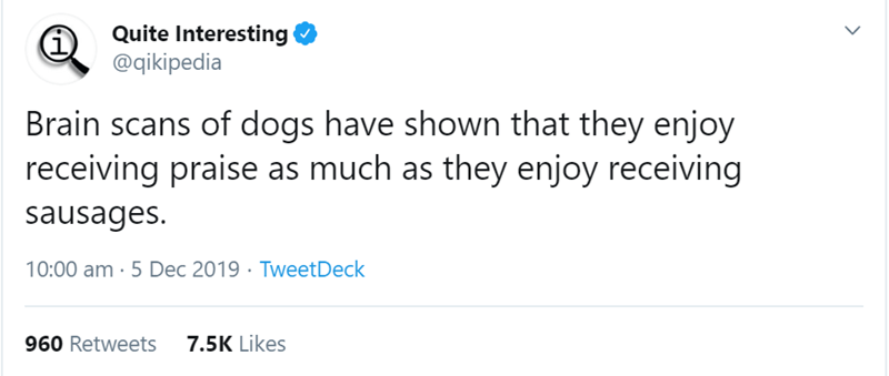 Text - Quite Interesting @qikipedia Brain scans of dogs have shown that they enjoy receiving praise as much as they enjoy receiving sausages. 10:00 am · 5 Dec 2019 · TweetDeck 7.5K Likes 960 Retweets
