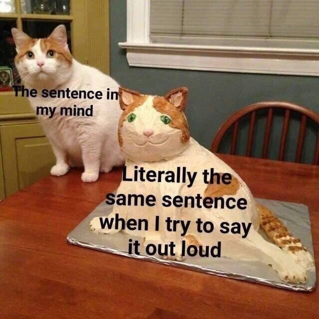 Cat - The sentence in my mind Literally the same sentence when I try to say it out loud