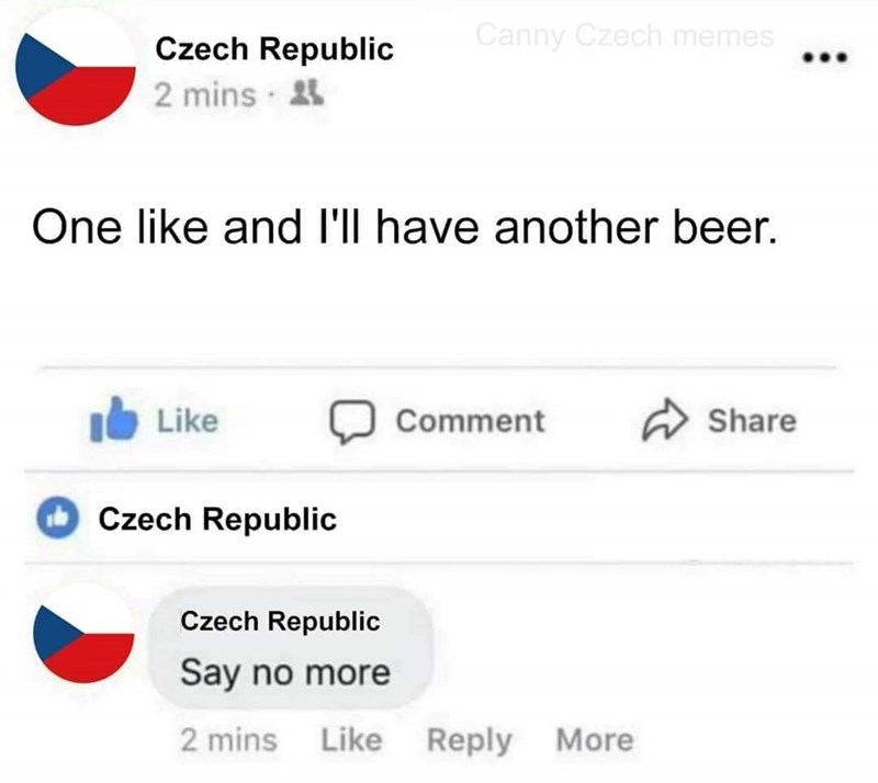 Text - Canny Czech memes Czech Republic 2 mins · 4 One like and l'll have another beer. A Share Like Comment Czech Republic Czech Republic Say no more 2 mins Like Reply More