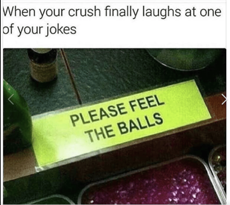 Text - When your crush finally laughs at one of your jokes PLEASE FEEL THE BALLS