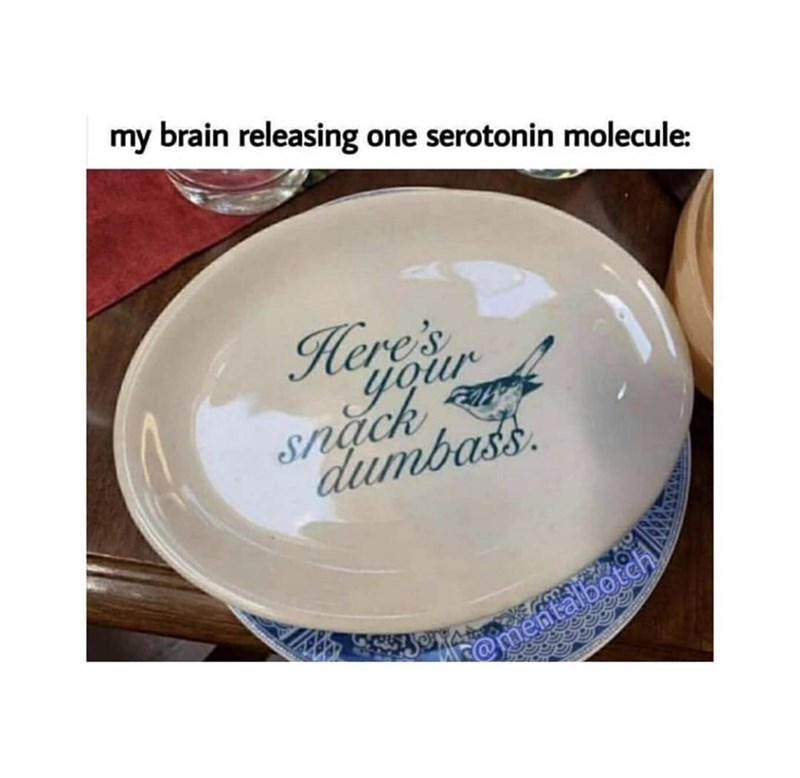 Dishware - my brain releasing one serotonin molecule: Here's your Snặch dumbass. @mentalbotch