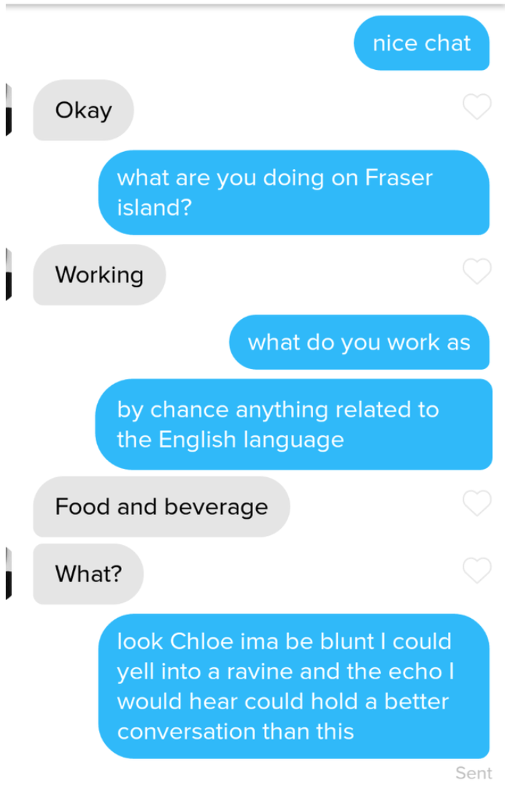 Text - nice chat Okay what are you doing on Fraser island? Working what do you work as by chance anything related to the English language Food and beverage What? look Chloe ima be blunt I could yell into a ravine and the echo | would hear could hold a better conversation than this Sent