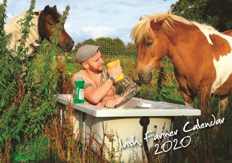 Horse - Famer Alich Farmer Calendar 2020