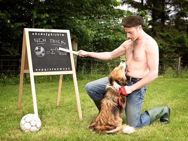Dog - abedefghIJklm NEW TRICK BONE nopqrstuvwxyz