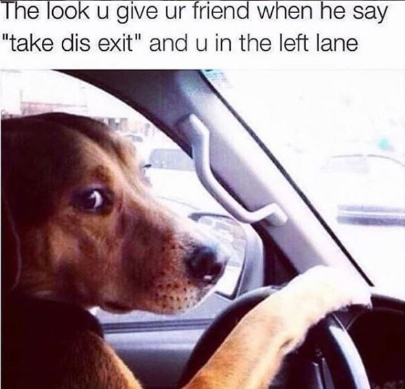 "Dog - The look u give ur friend when he say ""take dis exit"" and u in the left lane"