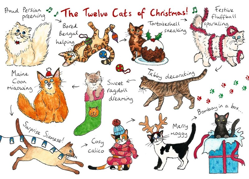 Clip art - Festive fluffball sparkling Prond Persian TThe Twelve Cats of Christmas! preening Tortoiseshell Bored sneaking Bengal a helping abby decorating Maine Sweet Coon Miaowing ragdoll dreaming box.. Bombay in Merry Surprise Siameso! Moggy Cosy calico