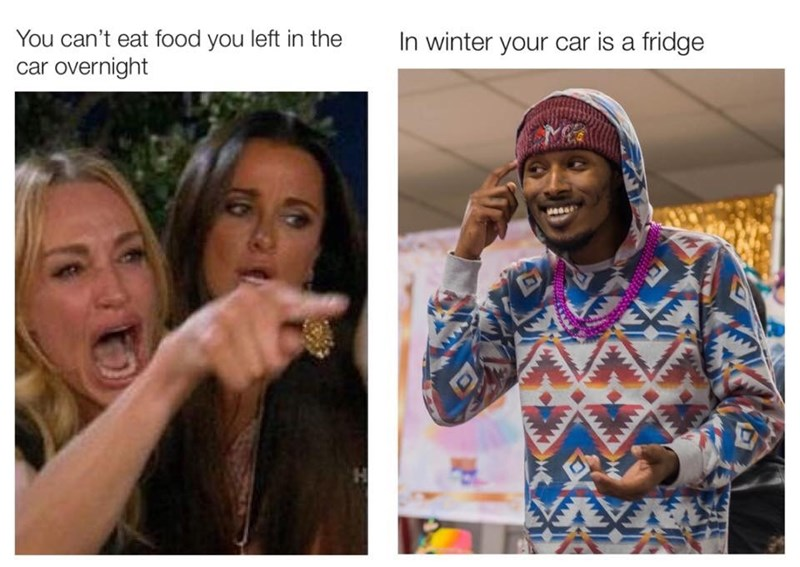 People - You can't eat food you left in the car overnight In winter your car is a fridge