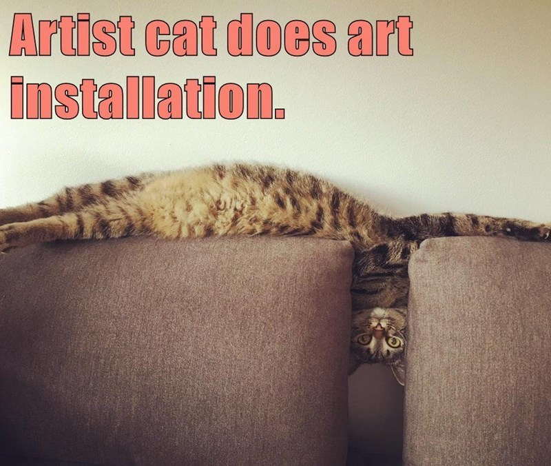 Cat - Cat - Artist cat does art installation.