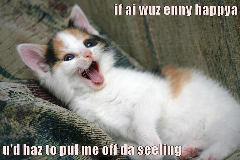 Cat - if ai wuz enny happya u'd haz to pul me off da seeling