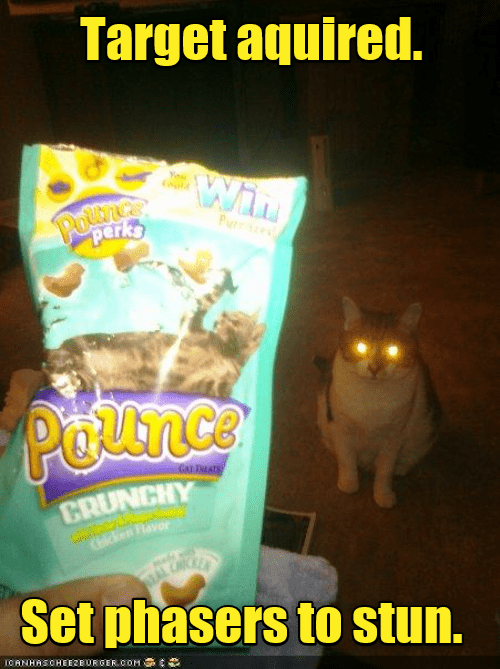 Cat - Snack - Target aquired. Win You Poumce perks Purre Pounce GAI LATS CRUNCHY CHicken Flavor STAL Set phasers to stun. LCANHASCHEEZBURGER.COM