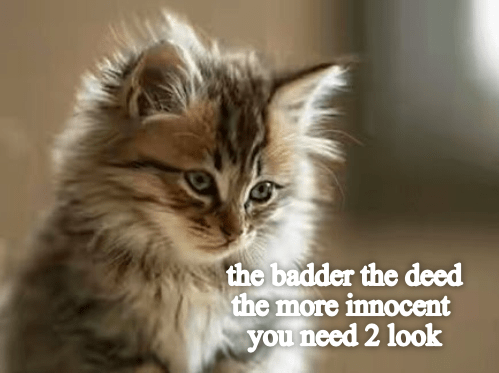 Cat - the badder the deed the more innocent you need 2 look