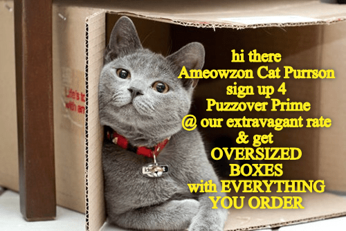 Cat - hi there Ameowzon Cat Purrson sign up 4 Puzzover Prime @our extravagant rate & get OVERSIZED BOXES with EVERYTHING YOU ORDER Utst Nth an