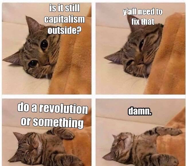 Cat - isit still capitalism outside? yall need to fix that do a revolution or something damn.