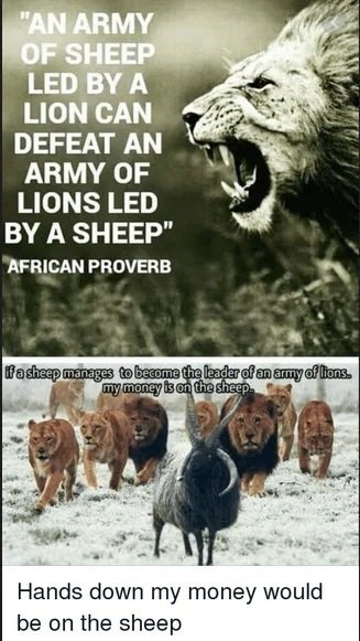 "Wildlife - ""AN ARMY OF SHEEP LED BY A LION CAN DEFEAT AN ARMY OF LIONS LED BY A SHEEP"" AFRICAN PROVERB fasheep manages to become the leader of an army of lions. my money is on the sheep Hands down my money would be on the sheep"