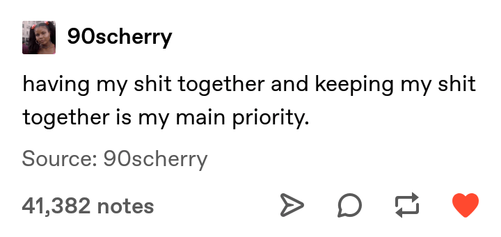 Text - 90scherry having my shit together and keeping my shit together is my main priority. Source: 90scherry 41,382 notes