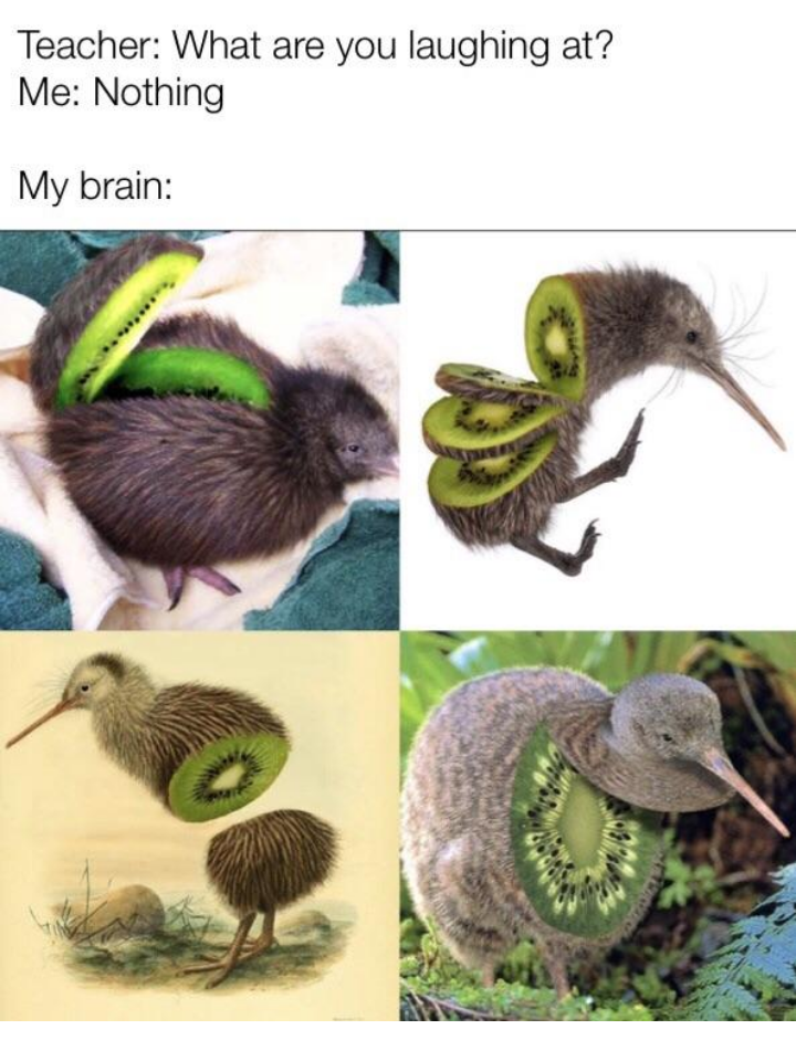Flightless bird - Teacher: What are you laughing at? Me: Nothing My brain: