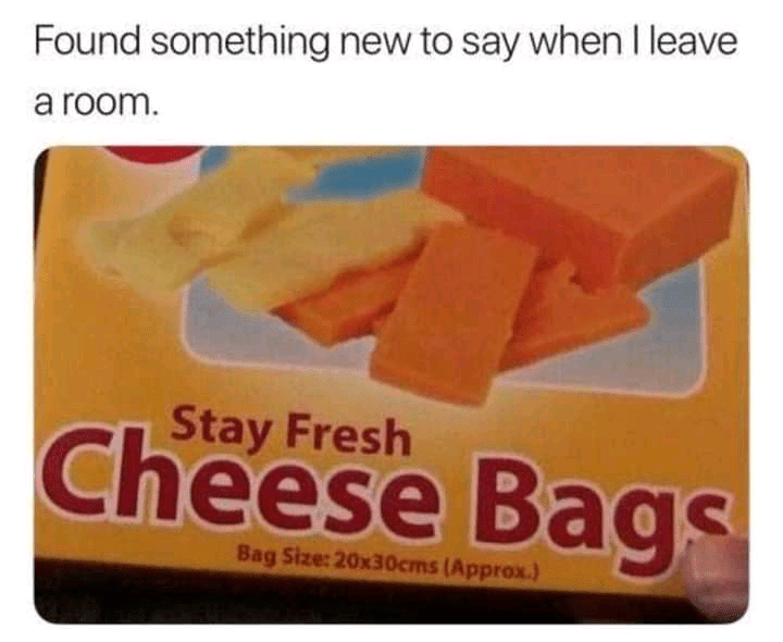 Orange - Found something new to say when I leave a room. Stay Fresh Cheese Bags Bag Size: 20x30cms (Approx.)