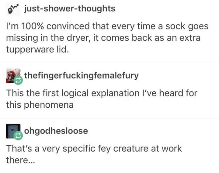 Text - Oe just-shower-thoughts I'm 100% convinced that every time a sock goes missing in the dryer, it comes back as an extra tupperware lid. thefingerfuckingfemalefury This the first logical explanation I've heard for this phenomena ohgodhesloose That's a very specific fey creature at work there...