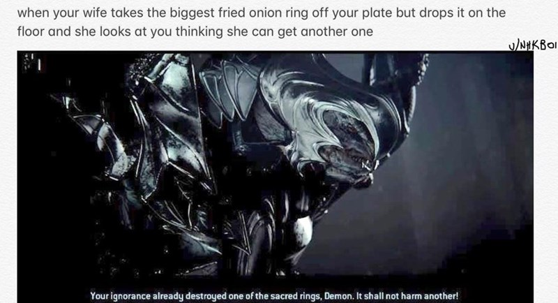 Text - when your wife takes the biggest fried onion ring off your plate but drops it on the floor and she looks at you thinking she can get another one u/NHKBOI Your ignorance already destroyed one of the sacred rings, Demon. It shall not harm another!