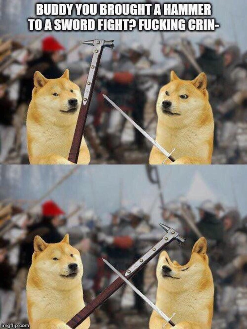 Mammal - BUDDY YOU BROUGHT A HAMMER TO A SWORD FIGHT? FUCKING CRIN- imgflip.com