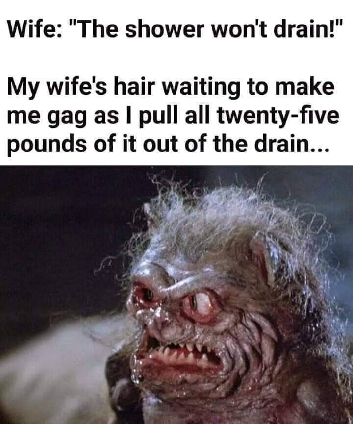 "Photo caption - Wife: ""The shower won't drain!"" My wife's hair waiting to make me gag as I pull all twenty-five pounds of it out of the drain..."