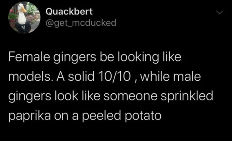 Text - Quackbert @get_mcducked Female gingers be looking like models. A solid 10/10 , while male gingers look like someone sprinkled paprika on a peeled potato