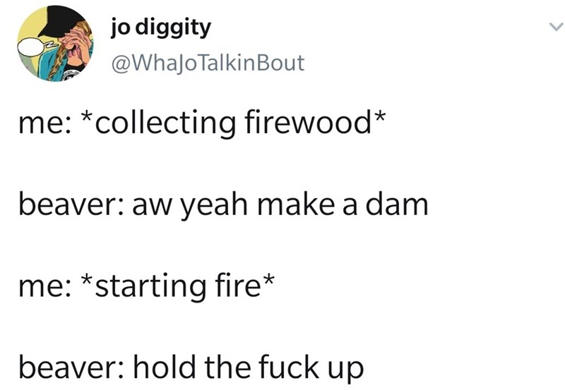 Text - Text - jo diggity @WhaJoTalkinBout me: *collecting firewood* beaver: aw yeah make a dam me: *starting fire* beaver: hold the fuck up