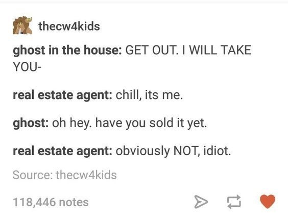 Text - thecw4kids ghost in the house: GET OUT. I WILL TAKE YOU- real estate agent: chill, its me. ghost: oh hey. have you sold it yet. real estate agent: obviously NOT, idiot. Source: thecw4kids 118,446 notes