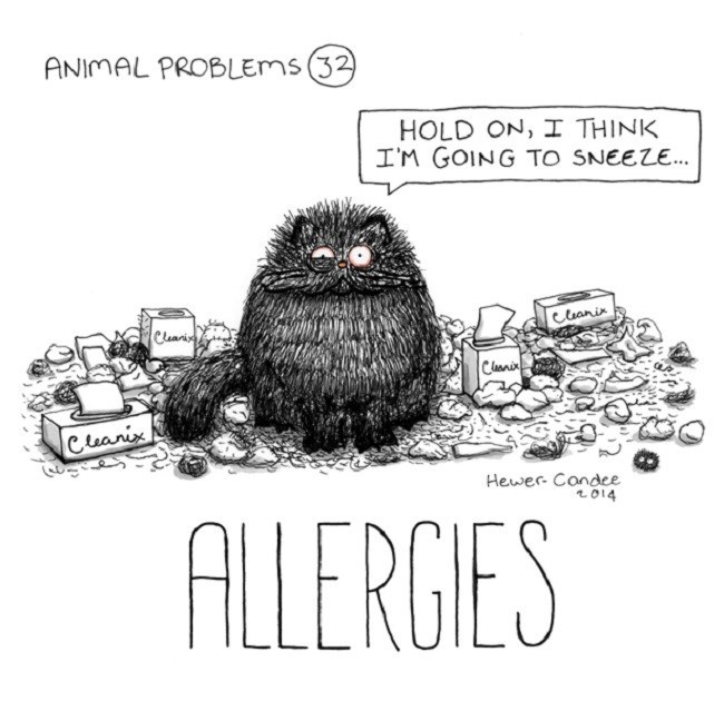 Cartoon - ANIMAL PROBLEMS (32) HOLD ON, I THINK I'M GOING TO SNEEZE.. Ceanir Cleanin Clanir Cleanix Hewer- Condce 2014 ALLERGIES