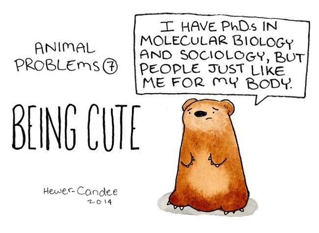 Groundhog - I HAVE PhD.s IN MOLECULAR BIOLOGY AND SOCIOLOGY, BUT PEOPLE JUST LIKE ME FOR MY BODY. ANIMAL PROBLEMSO BEING CUTE Hewer-Candlee 2014