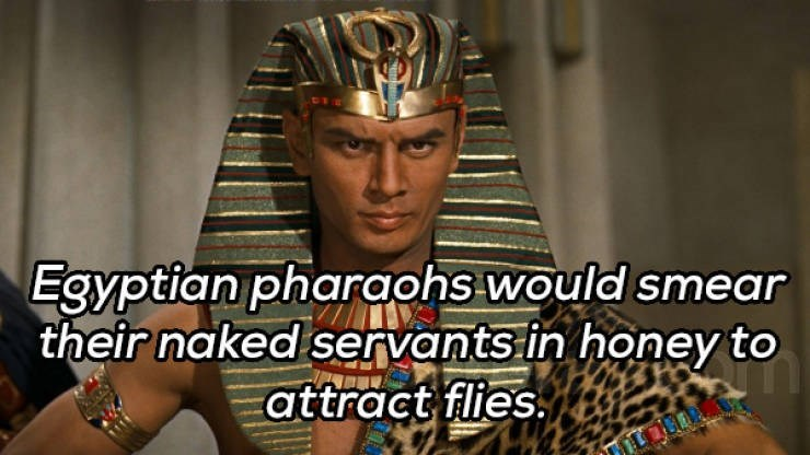 Cool - Egyptian pharaohs would smear their naked servants in honey to attract flies.