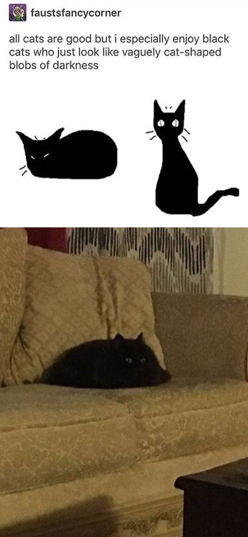 Cat - faustsfancycorner all cats are good but i especially enjoy black cats who just look like vaguely cat-shaped blobs of darkness