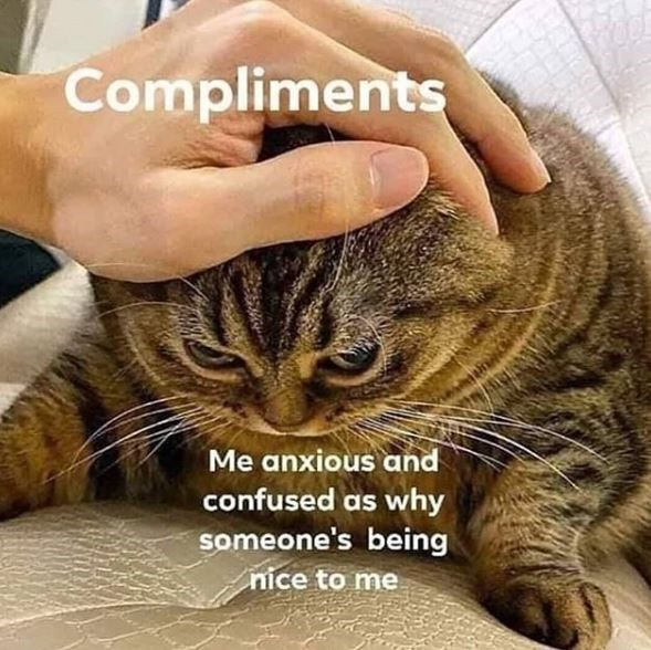 Cat - Compliments Me anxious and confused as why someone's being nice to me