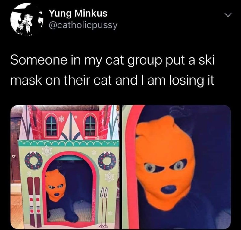 Product - Yung Minkus @catholicpussy Someone in my cat group put a ski mask on their cat and I am losing it 00 APOLLONIA 23NOV2019