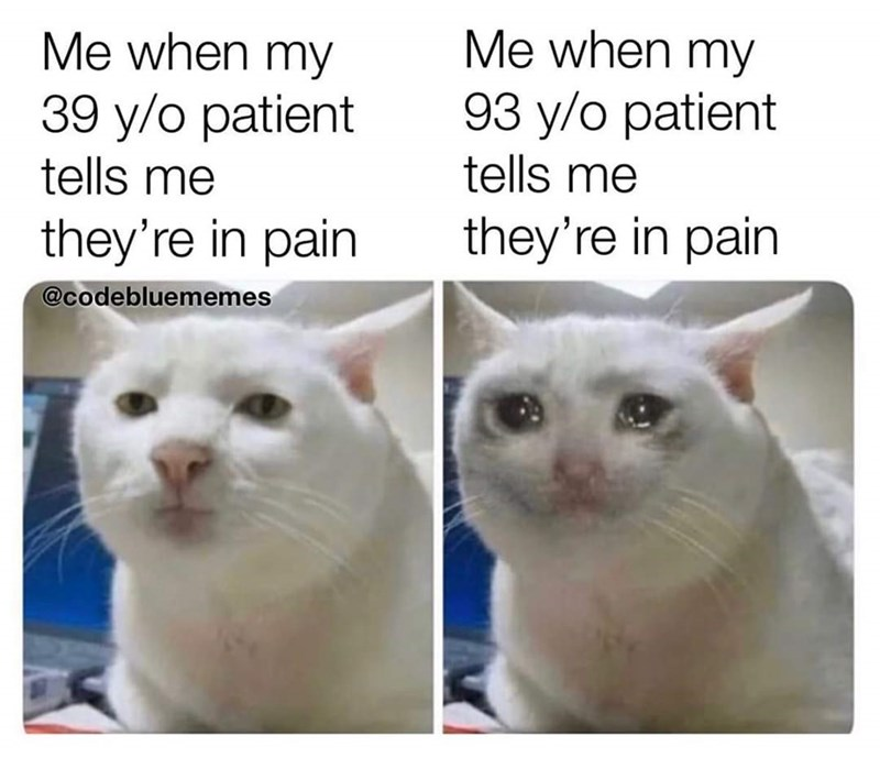 Cat - Me when my Me when my 93 y/o patient tells me 39 y/o patient tells me they're in pain they're in pain @codebluememes