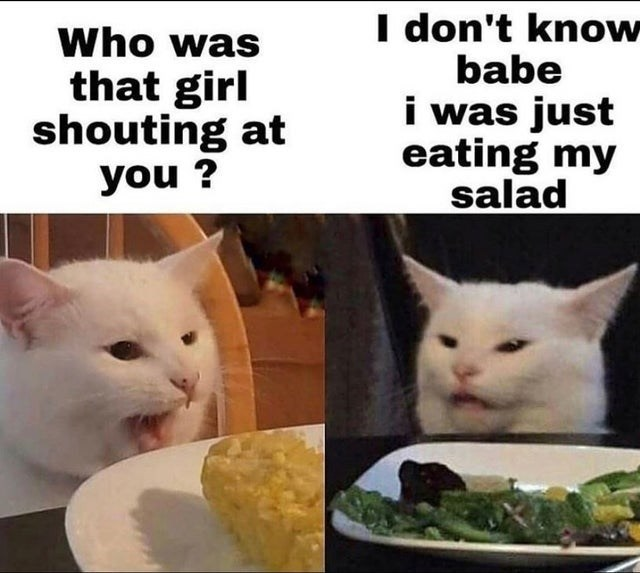 Cat - I don't know babe i was just eating my salad Who was that girl shouting at you ?