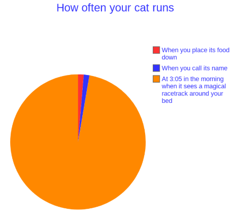 Text - How often your cat runs |When you place its food down |When you call its name At 3:05 in the morning when it sees a magical racetrack around your bed
