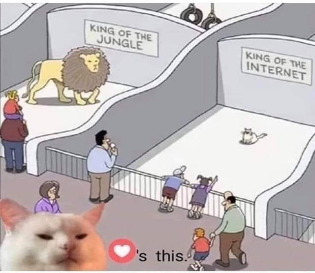 Cartoon - KING OF THE JUNGLE KING OF THE INTERNET 's this.