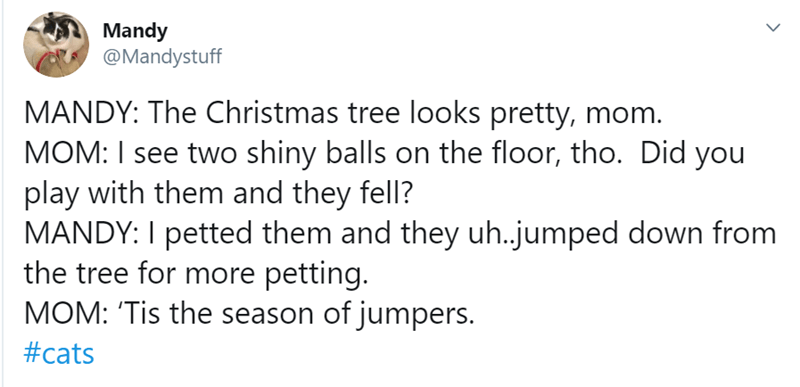 Text - Mandy @Mandystuff MANDY: The Christmas tree looks pretty, mom. MOM: I see two shiny balls on the floor, tho. Did you play with them and they fell? MANDY: I petted them and they uh.jumped down from the tree for more petting. MOM: 'Tis the season of jumpers. #cats