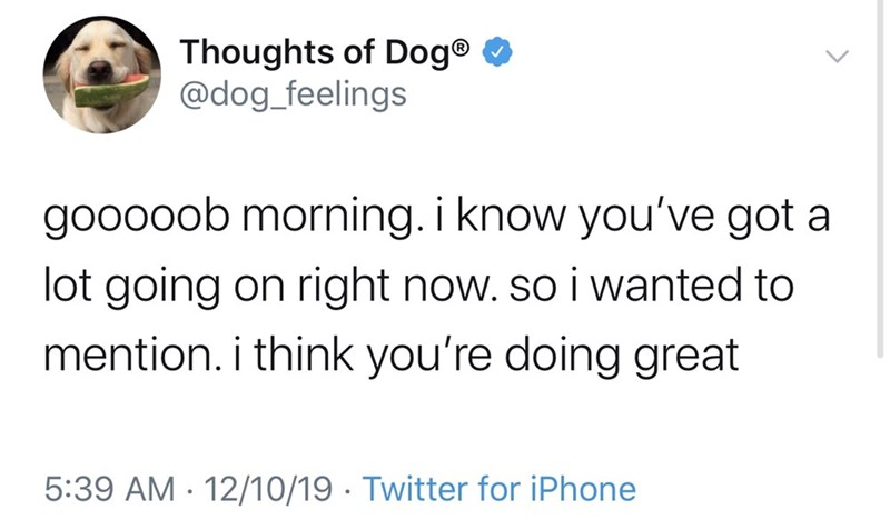 Text - Thoughts of Dog® 0 @dog_feelings gooooob morning. i know you've got a lot going on right now. so i wanted to mention. i think you're doing great 5:39 AM · 12/10/19 · Twitter for iPhone
