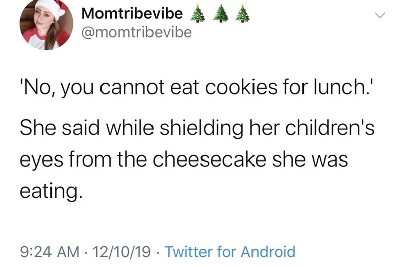 Text - Momtribevibe A @momtribevibe 'No, you cannot eat cookies for lunch.' She said while shielding her children's eyes from the cheesecake she was eating. 9:24 AM - 12/10/19 · Twitter for Android