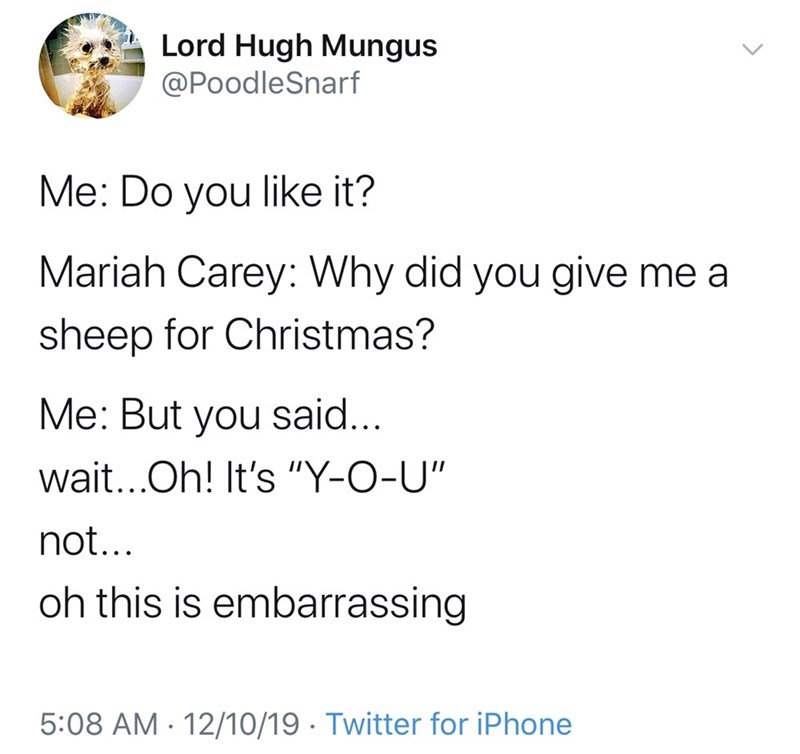 "Text - Lord Hugh Mungus @PoodleSnarf Me: Do you like it? Mariah Carey: Why did you give me a sheep for Christmas? Me: But you said... wait...Oh! It's ""Y-O-U"" not... oh this is embarrassing 5:08 AM · 12/10/19 · Twitter for iPhone"