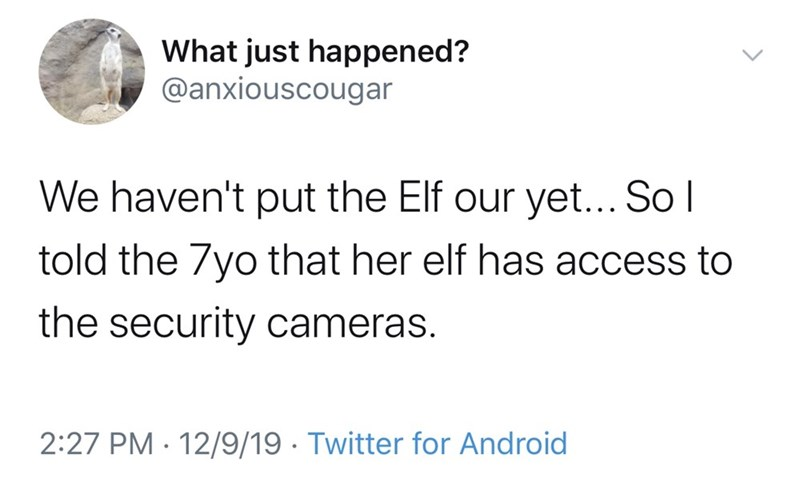 Text - What just happened? @anxiouscougar We haven't put the Elf our yet... So I told the 7yo that her elf has access to the security cameras. 2:27 PM · 12/9/19 · Twitter for Android