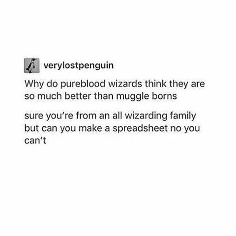 Text - A verylostpenguin Why do pureblood wizards think they are so much better than muggle borns sure you're from an all wizarding family but can you make a spreadsheet no you can't