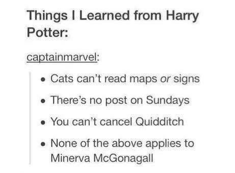 Text - Things I Learned from Harry Potter: captainmarvel: • Cats can't read maps or signs • There's no post on Sundays • You can't cancel Quidditch • None of the above applies to Minerva McGonagall